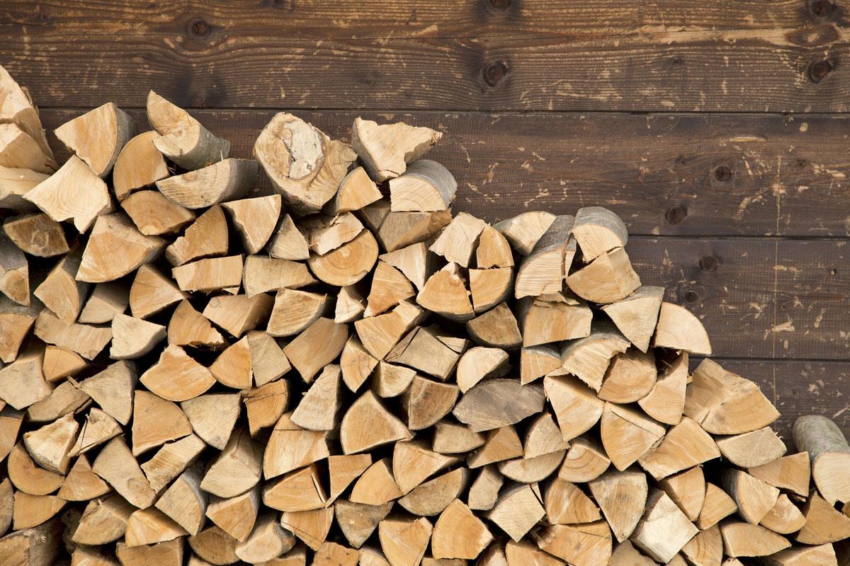 Teaser_Forstwirtschaft